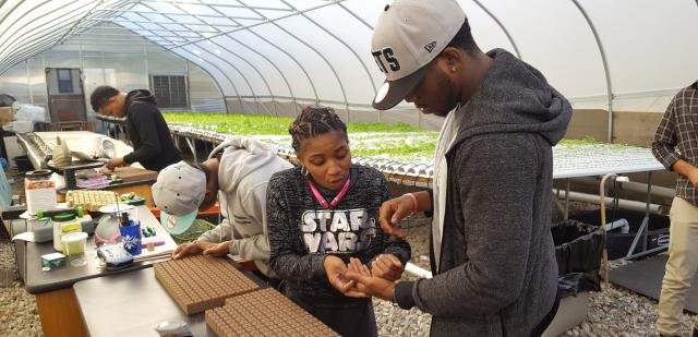 Harlem Justice Corps almost-graduate Jeffery Bradshaw gets some pointers on seeding from Harlem Grown's Latonya Assanah. The Justice Corps members have been building planter boxes and compost bins for a previously abandoned lot and painted travelling murals for Harlem Grown sites in the area. Jeffery and the rest of the first cohort of the Justice Corps' fifth year graduate this week. Congratulations all!