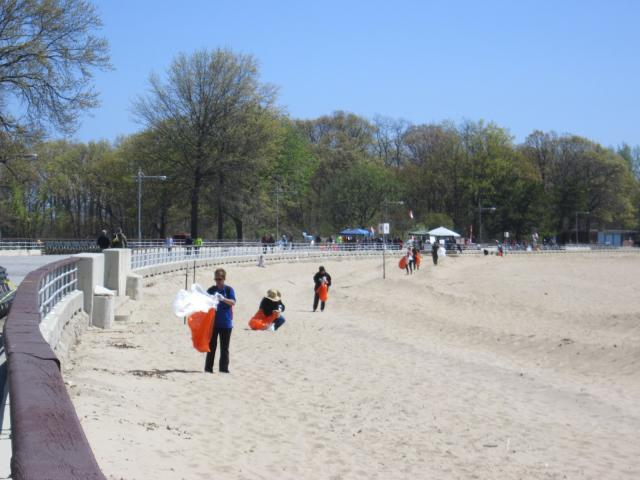 To clean up Orchard Beach, Bronx Community Solutions partners up with New York City Department of Parks and Recreation, GrowNYC, the U.S. Coast Guard, and others. (May 15, 2013)