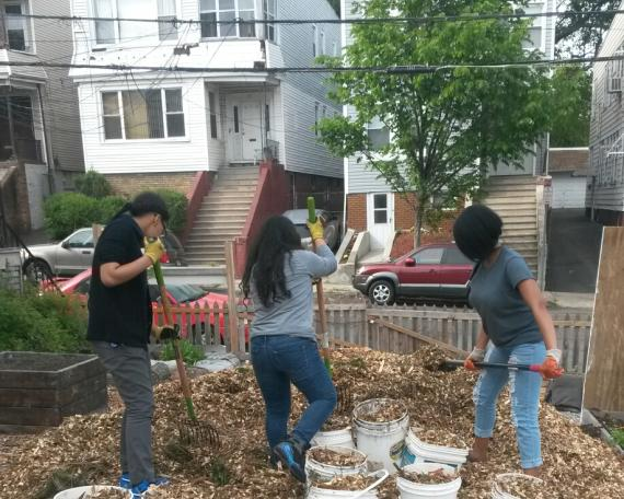Newark Youth Court members participating in community service