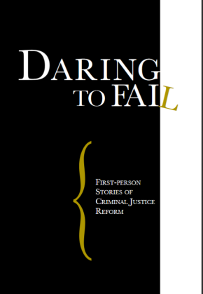 Cover of Daring to Fail
