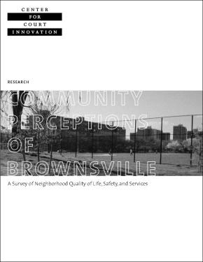 Community Perception of Brownsville