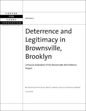 Deterrence and Legitimacy in Brownsville, Brooklyn
