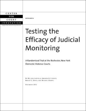 Testing the Efficacy of Judicial Monitoring