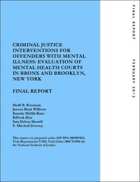 Criminal Justice Interventions: Final Report