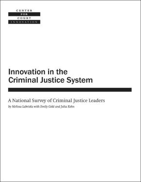Innovation in the Criminal Justice System