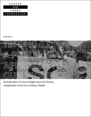 Testing Approach to Gun Violence