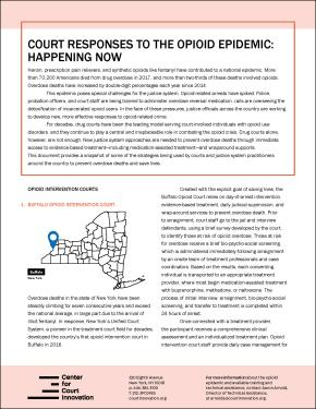 Cover: Court Responses to the Opioid Epidemic: Happening Now