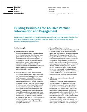 Front cover of 'guiding principles'