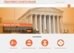 Treatment Court online learning