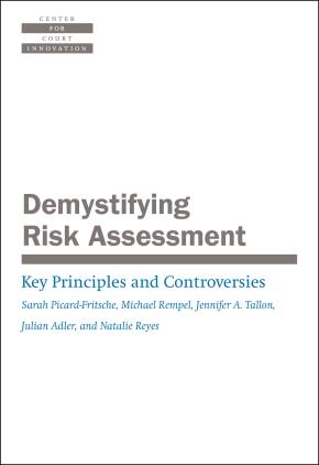 Demystifying Risk Assessment: Key Principles and Controversies