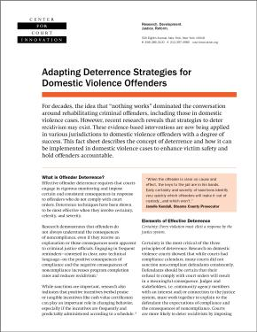 Adapting Deterrence Strategies for Domestic Violence Offenders